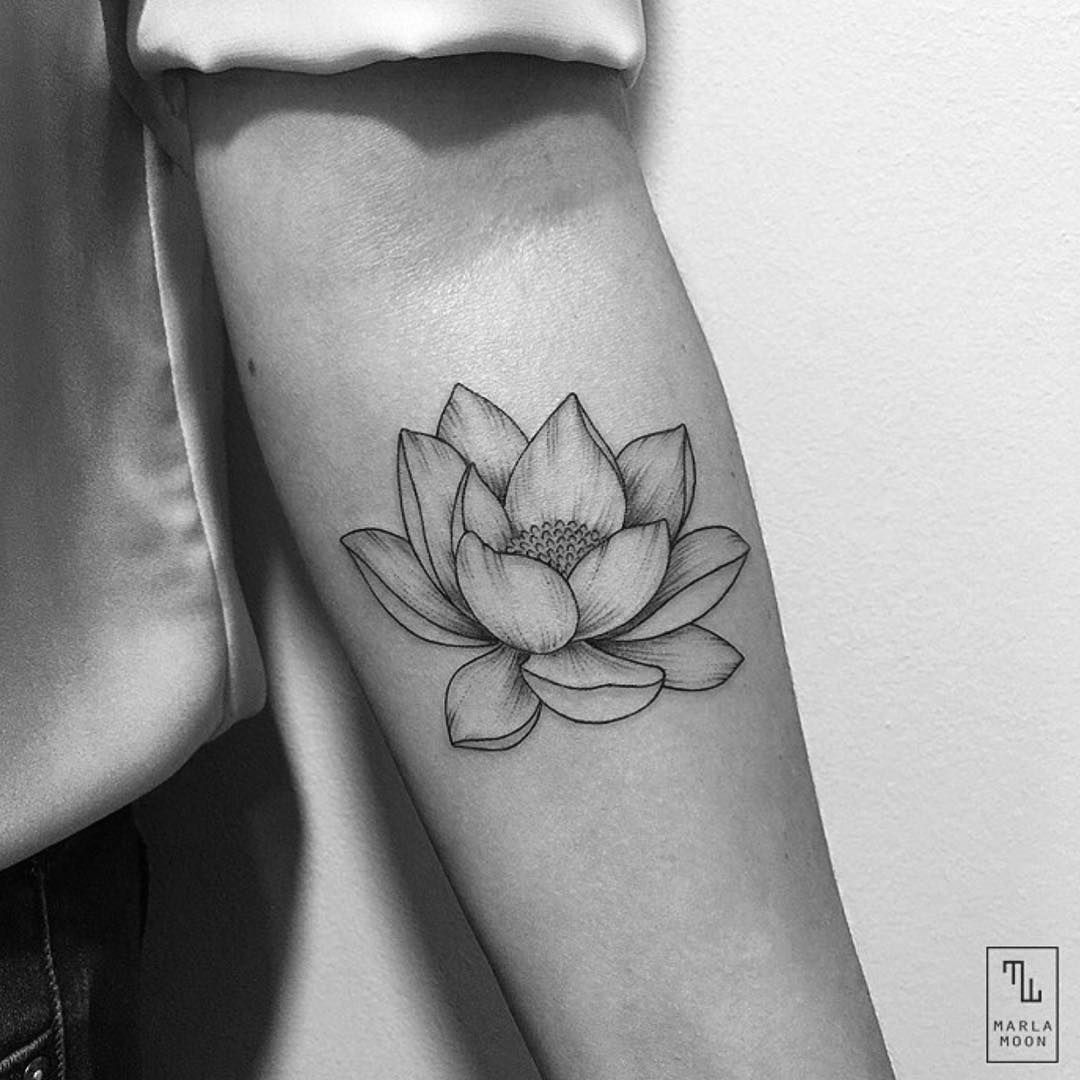 Insta universodeinspiracao tetovn pinterest tattoo tatoo for my first tattoo lotus flowers izmirmasajfo