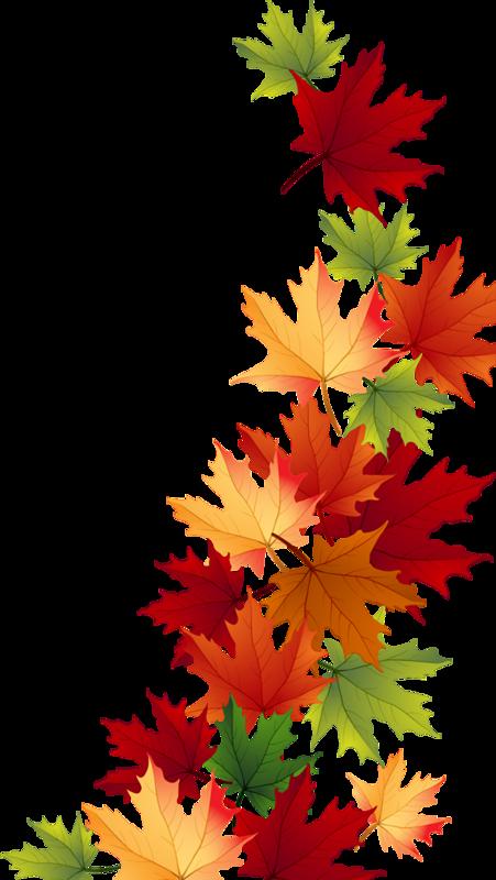 Осеннее очарование