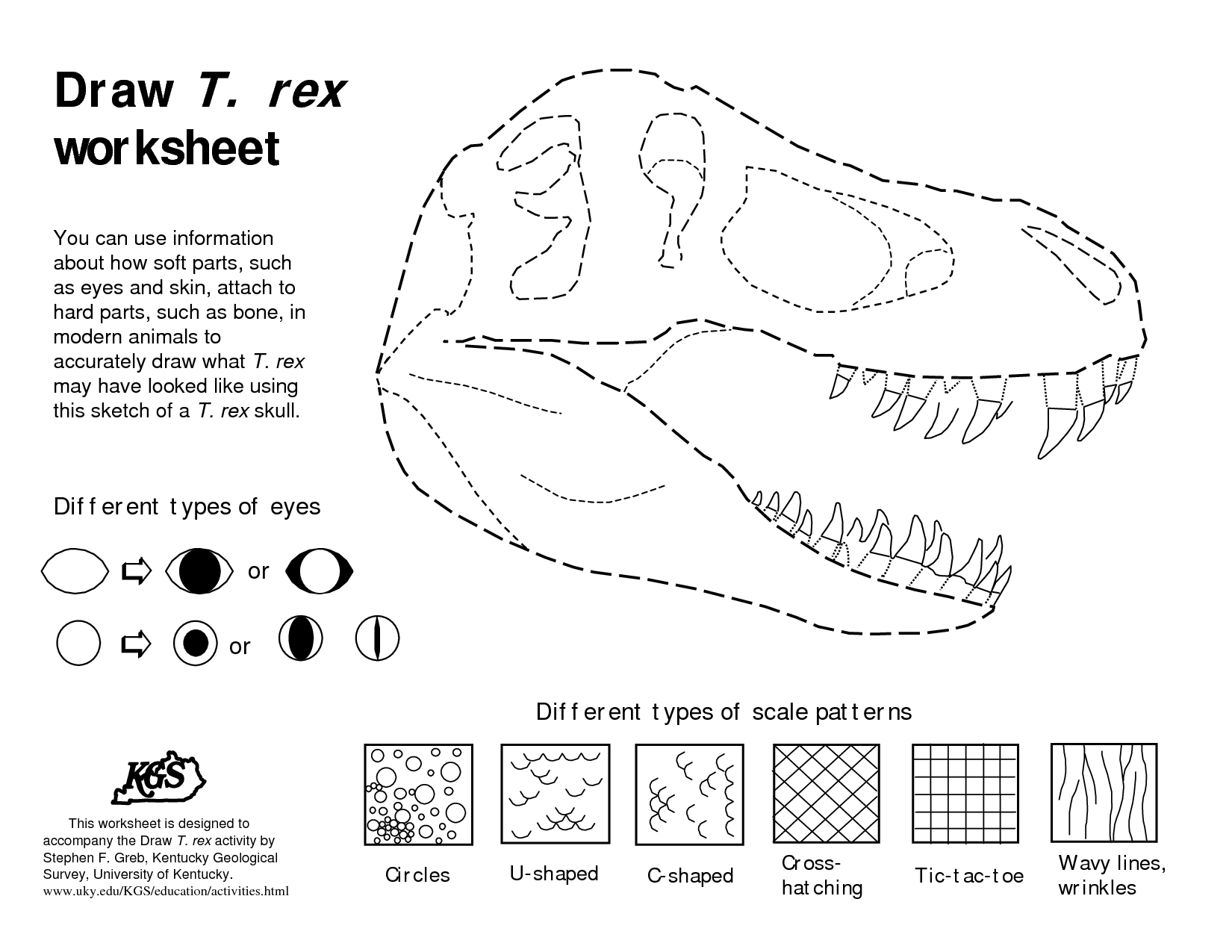 dinosaurs bones draw draw t rex worksheet pdf preschool worksheets drawings math. Black Bedroom Furniture Sets. Home Design Ideas