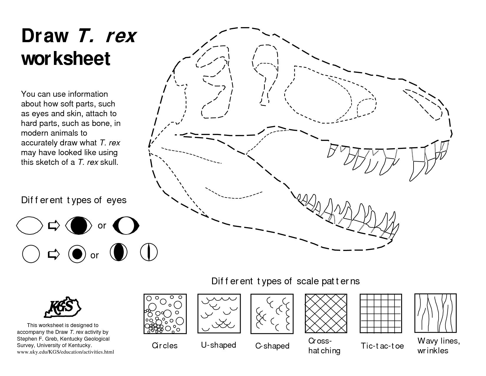 Dinosaurs Bones Draw Draw T Rex Worksheet