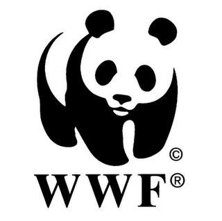 national wildlife fund logo - Google Search | logos | Pinterest ...