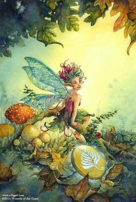 Beautiful Fairy in the Woods