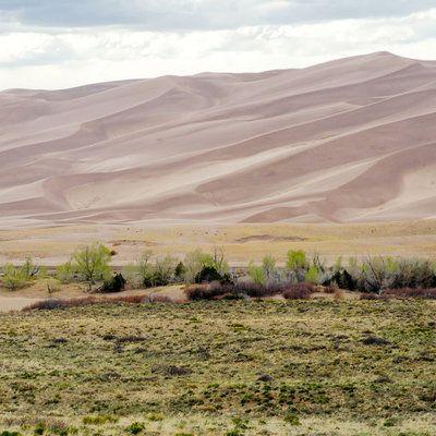 Colorado: Piñon Flats Campground, Great Sand Dunes National Park
