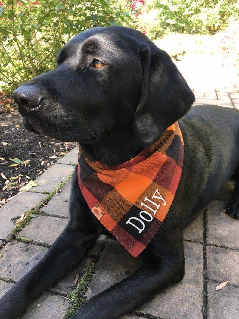 Plaid Flannel Dog Bandana Fall Dog Bandana Monogrammed Dog Etsy Flannel Dog Bandana Plaid Dog Bandana Dog Bandana