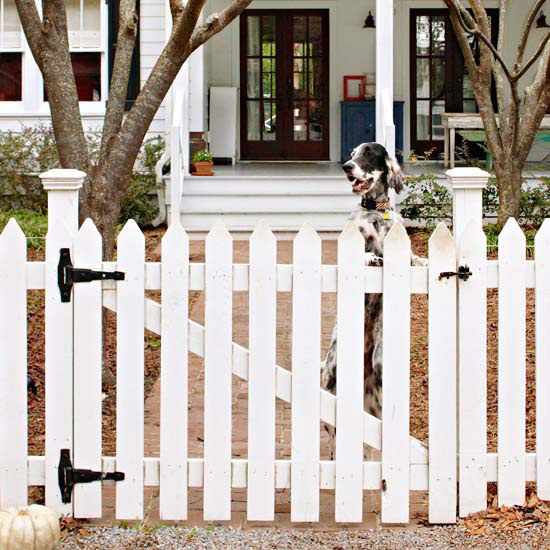 Fencing: Keep Your Dog Safe | Fences, Porch and Front porches