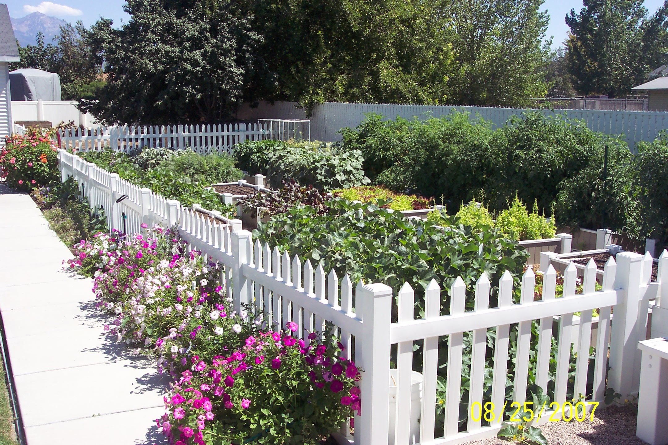 Make Your Patch A Paradise With Low Maintenance Raised Beds Raised Garden Beds Garden Beds Garden Planters