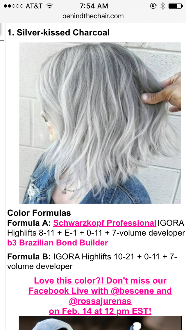 bescene the chair hair color formulas