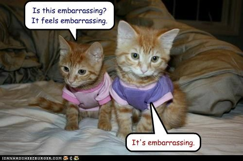 Is this embarrassing?  It feels embarrassing.