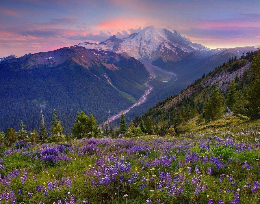 Природа красивые картинки и фотографии пейзаж