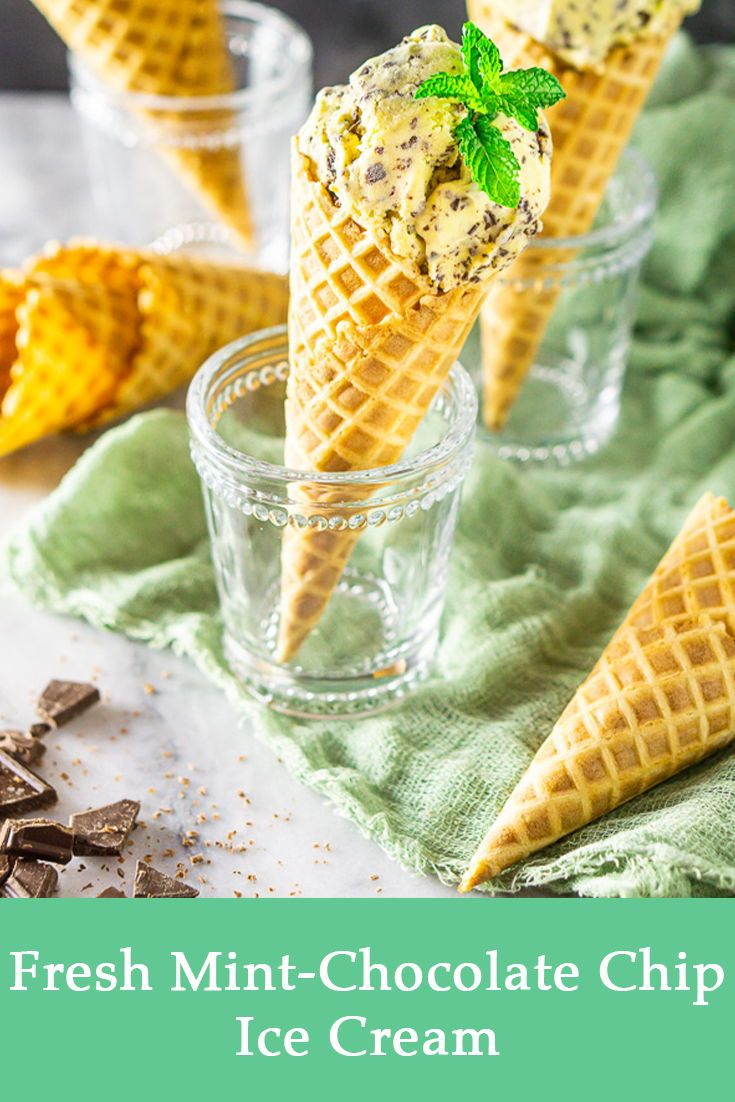 Fresh Mint Chocolate Chip Ice Cream Burrata And Bubbles Recipe In 2020 Mint Desserts Mint Chocolate Chips Chocolate Chip Ice Cream