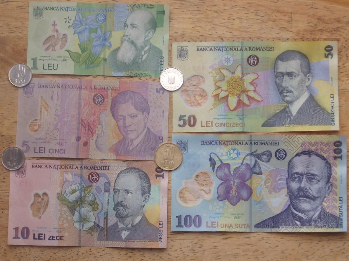 The currency in Romania is called the leu | Romania, Go ...
