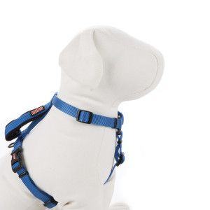 Null Dog Harness Dog Collars Leashes Dogs
