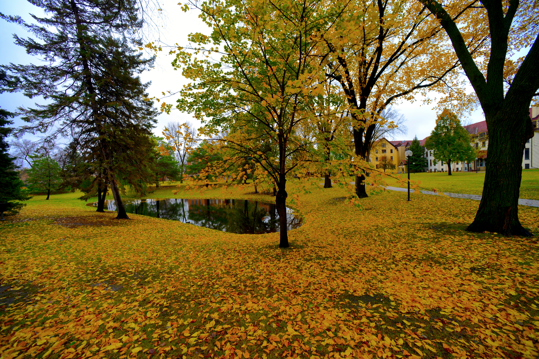 Gorgeous Fall Shot Of The North End Of Campus At Concordia College In Moorhead Minnesota Cordmn Midwest Autumn Country Scenes Concordia College Fall Shoot