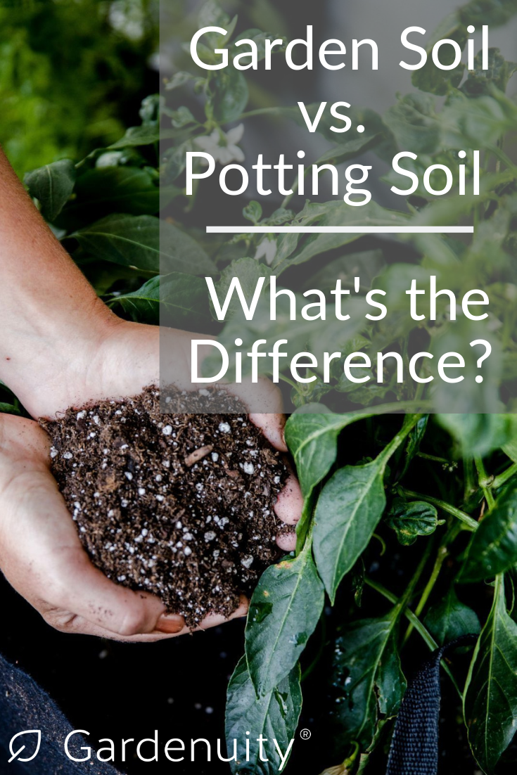 Garden Soil Vs Potting Soil With Images Garden Soil Potting