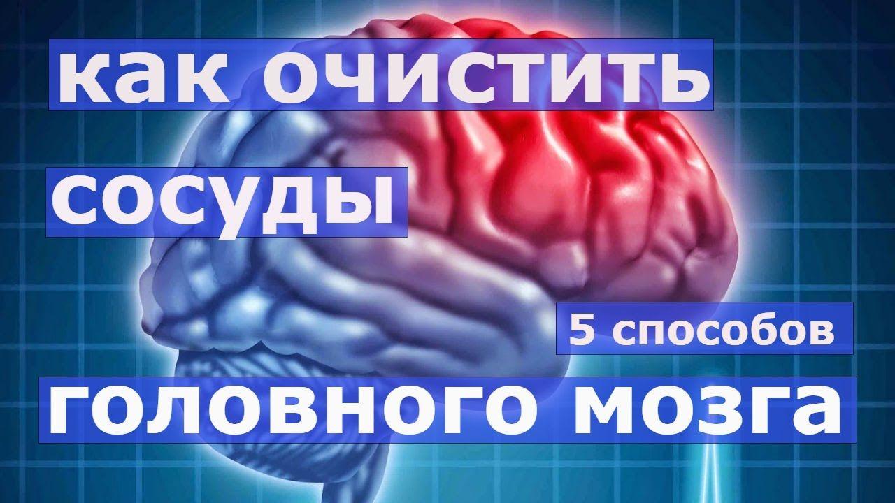 Как очистить сосуды головного мозга