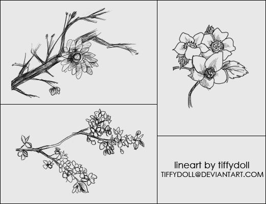 flower brush set by tiffydoll deviantart com on