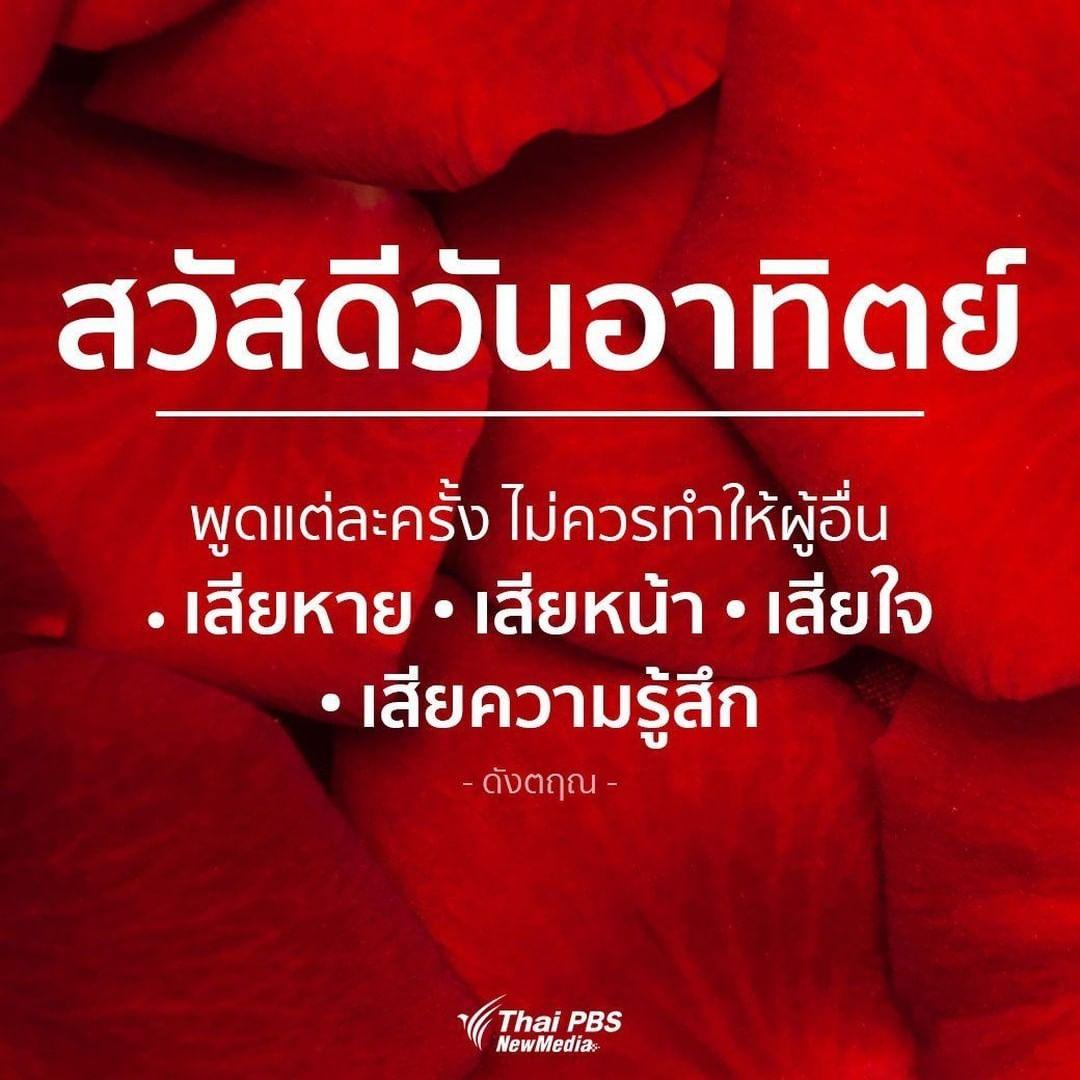 Thai Pbs ไทยพ บ เอส On Instagram สว สด ว นอาท ตย พ ดแต ละคร ง ไม ควรทำให ผ อ น เส ยหาย เส ยหน า เส ยใจ เส ยความร ส ก คำคม คำคมค ดบวก คำคมการใช ช ว ต