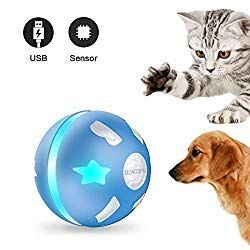 Interactive Dog Toys Exercise PetDroid Interactive Dog & Cat Toy