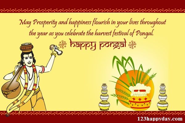 Pongal greetings free download pongal images pinterest pongal pongal greetings free download m4hsunfo