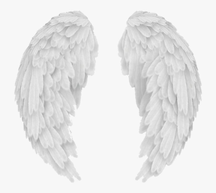 Transparent Background Angel Wings Png Png Download Is Free Transparent Png Image To Explore More Similar Hd In 2020 Wings Png Angel Wings Png Transparent Background