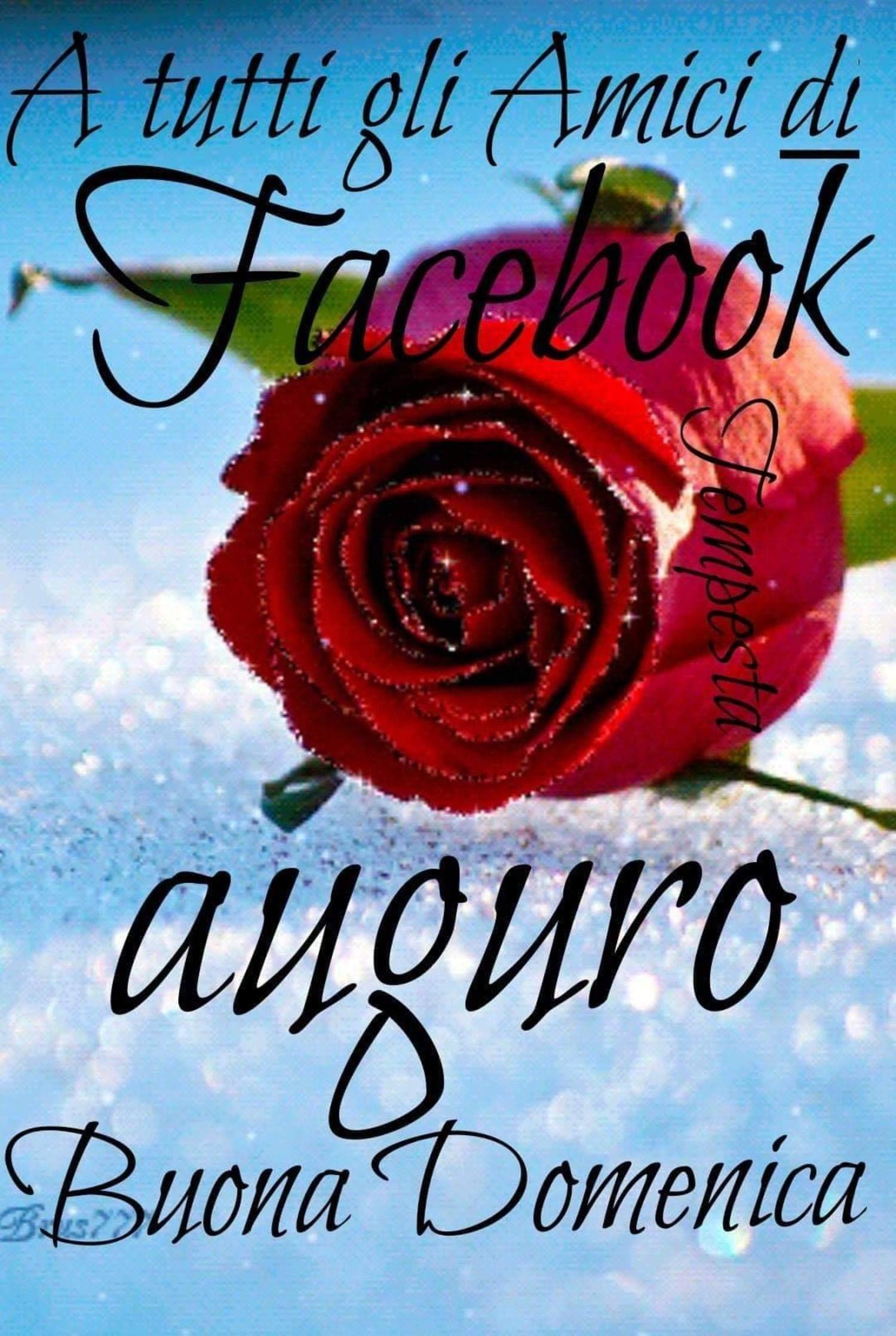 A Tutti Gli Amici Di Facebook Buona Domenica 449