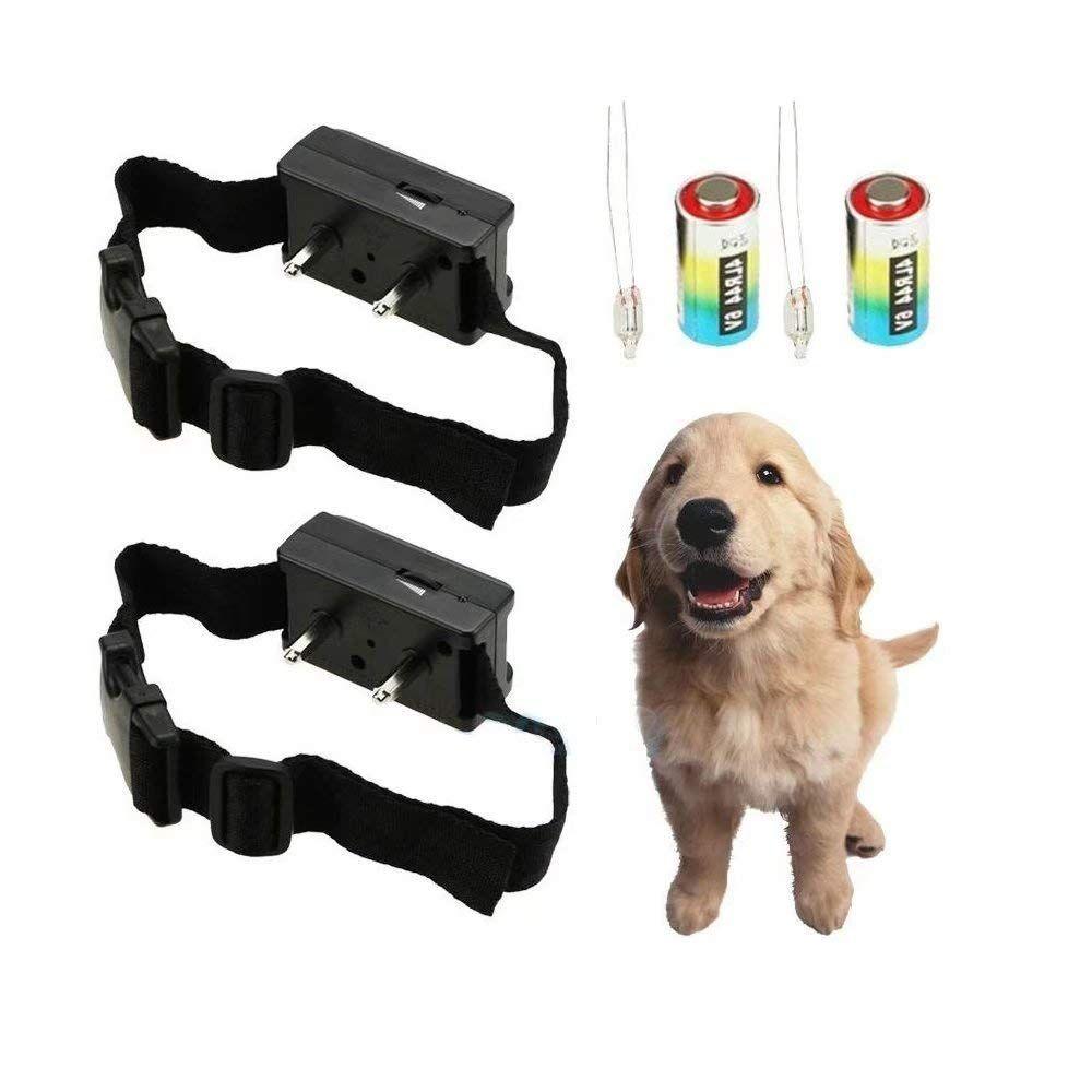Jahyshow Petsafe Elite Little Dog Bark Control Collar Rfa 441 Swr 1 Wonderful Of You To Have Dropped By To Bark Control Collar Dog Barking Dog Bark Control