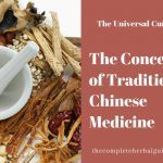 The Concept of Traditional Chinese Medicine