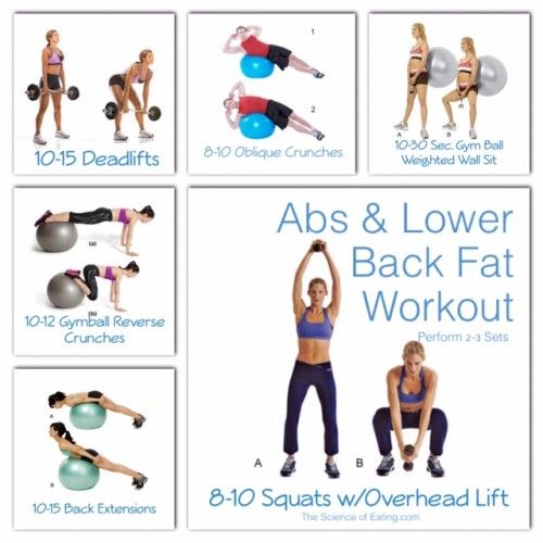 Workout Abs Lower Back Fat