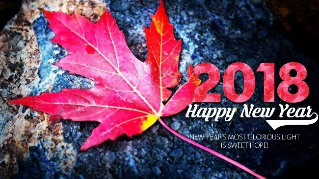 happy new year 2018 images download with new year greetings