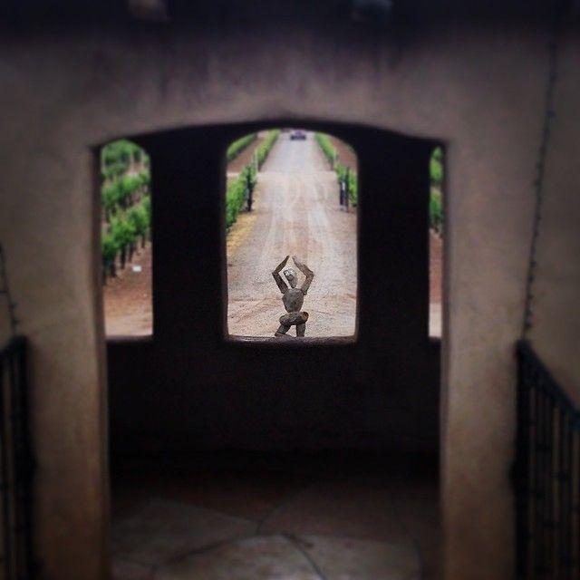 A beautiful view of  Albuquerque's Casa Rodena Vineyard, from black_steele via Instagram. #NMTrueHeritage