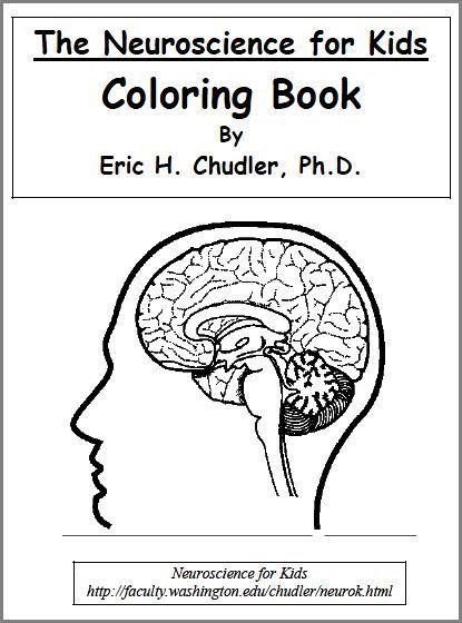 biology science coloring sheets printable