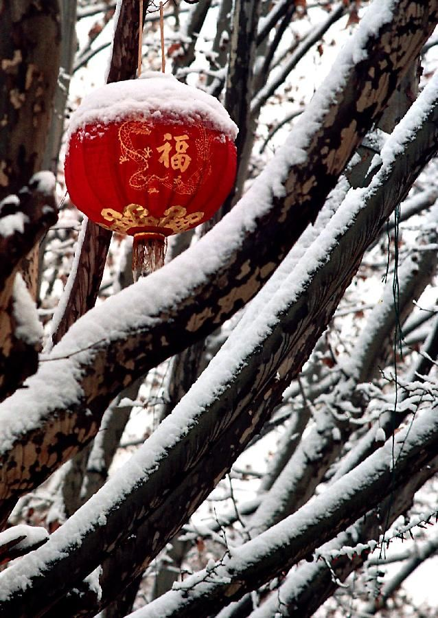 Red Lantern With A Chinese Character Fu On It Hung On A
