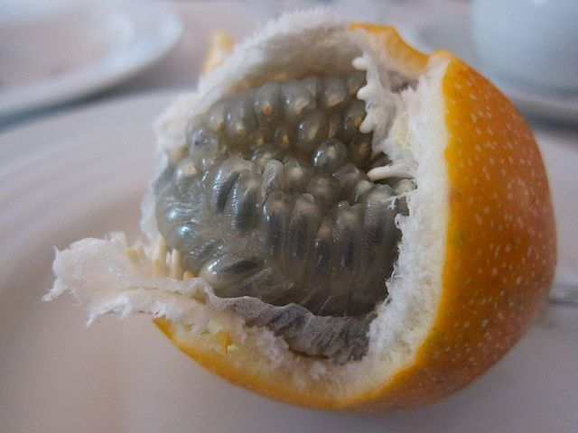 """granadillas - i used to love eating these when i'd visit my abuelito and grandma in lima, peru. my brother and i called them """"mocos"""" because of what the fruit looks like..."""