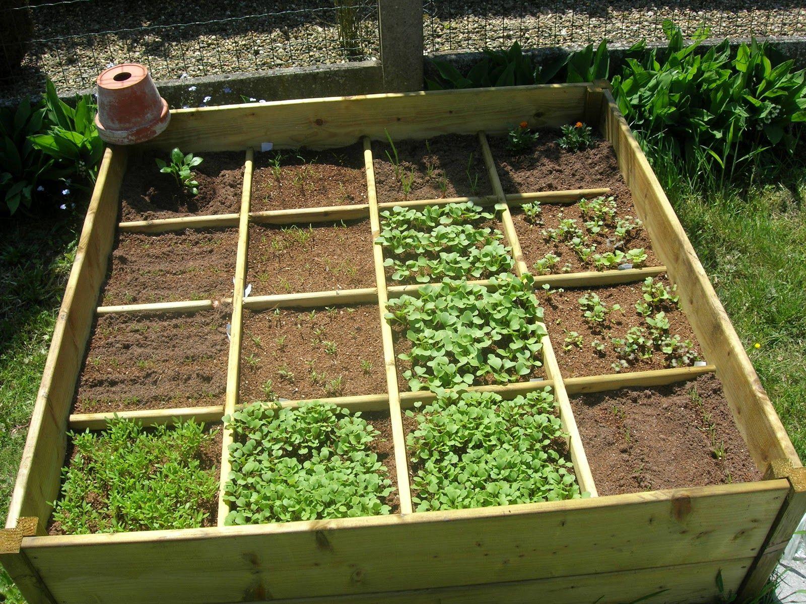Photo De Grand Jardin Cultive Recherche Google Jardin Potager Jardinage Potager Facile
