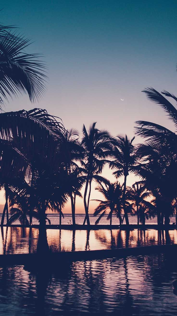 Sunset at the beach iPhone wallpaper, best beach iphone background #iphonewallpaper #beachbackground