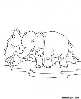 baby jungle animals coloring pages printable jungle animal baby elephant coloring page for kids. Black Bedroom Furniture Sets. Home Design Ideas