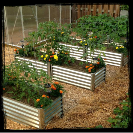 Sendero Metal Garden Beds from www.metalgardenbeds.com $64.98