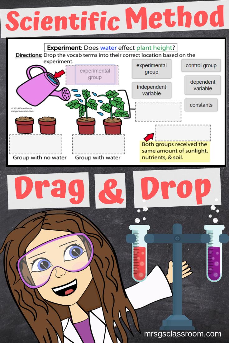 Scientific Method Free Drag Drop Activity Scientific Method Scientific Method Activities Scientific Method Free