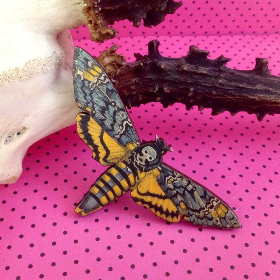 Deaths Head Hawk Moth Badge Alternative Wedding Button Holes Cool Gift Ideas Birthday Present
