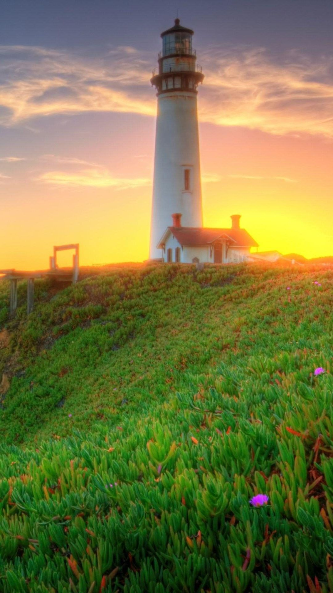 Lighthouse Green Coast Sunrise 4K Android and iPhone