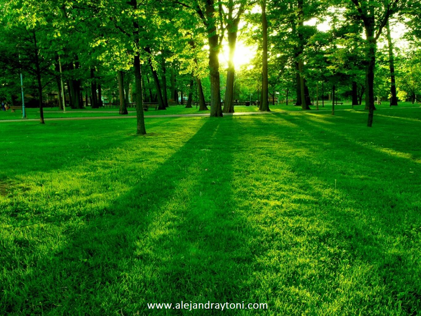 La pradera hace que mi alma se llene de paz, una paz intensa y profunda como el hermoso mar...