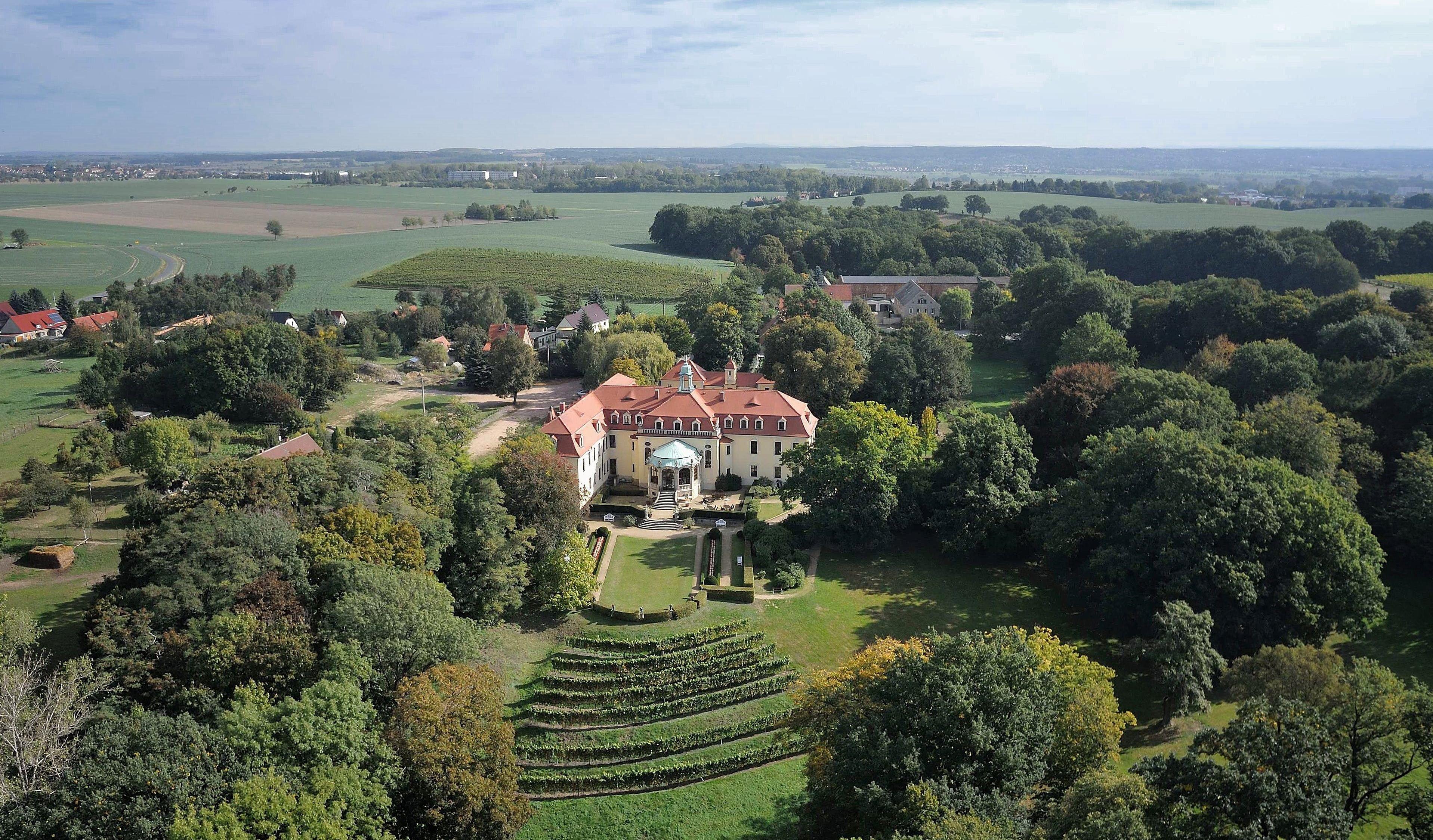 Das Weingut Schloss Proschwitz ist das älteste, private Weingut Sachsens.