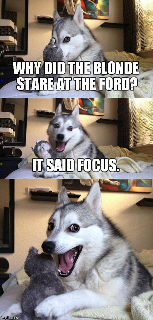 Why Did The Blonde Stare At The Ford It Said Focus