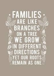 We Are Not Perfect Family Quotes Love Quotes Family Pinterest