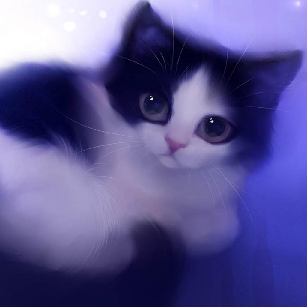Pin By Sharon Adkins On Ipad Wallpaper Cute Cat Wallpaper Cat Background Cat Wallpaper