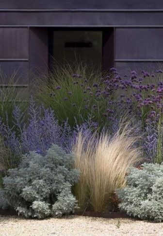 "surroundedbybeauty-gardendesign:"" Mexican Feather Grass + Artimesia + Russian Sage + Morning Light Grass + Ageratum // Could quite possibly be my most favorite grouping of plantings // This would make a beautiful naturalistic garden on the Outer... #modernlandscapedesign"