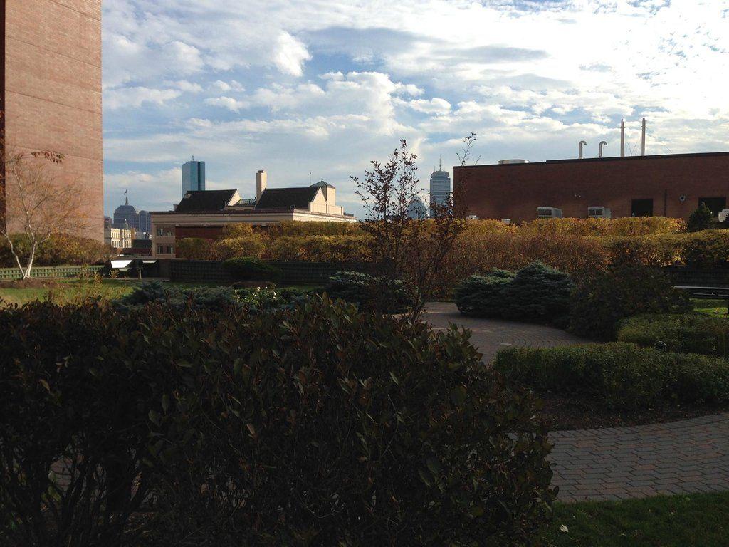 Cambridge Center Roof Garden, Cambridge: See 3 reviews ...