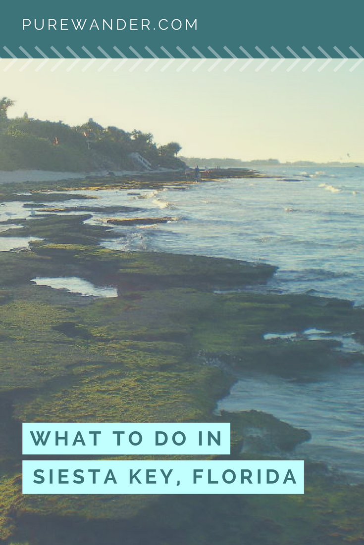 Things to do and Activities in Siesta Key, Florida is part of The  Best Things To Do In Siesta Key  With Photos - Welcome to Siesta Key, Florida  Once you get a taste of the good life down here, you will never want to leave  Home to every water sport you can think