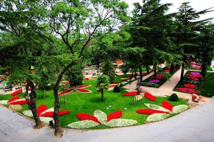 Emirgan Korusu - Sonbahar #istanbul #ibbPR #ibb #park #garden #flowers #nature #season #autumn