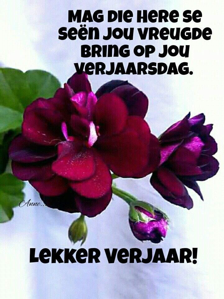 Birthday Wishes Cards Happy Afrikaans Birthdays Bible Greeting For Brithday Biblia